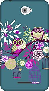 The Racoon Grip printed designer hard back mobile phone case cover for Sony Xperia E4. (Owl Paradi)