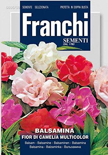 Springkraut A Fior Di Camelia von Franchi Sementi
