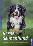 Berner Sennenhund: Auswahl, Haltung, Erziehung, Beschäftigung (Praxiswissen Hund)