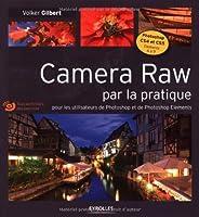 Cet ouvrage s'adresse aux utilisateurs de Photoshop (version CS4 ou CS5) ou de Photoshop Dements (version 6 et suivantes). Exclusivement construit sur des études de cas concrètes, il permettra aux photographes amateurs et professionnels de tirer le m...