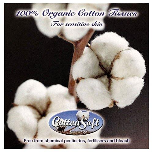 Coton Doux Mouchoirs Blancs (56)
