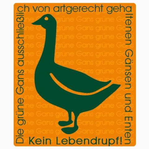 Eiderdaunendecke: HansKruchen Eiderdaune – Medium – Ganzjahres Eiderdaunendecke