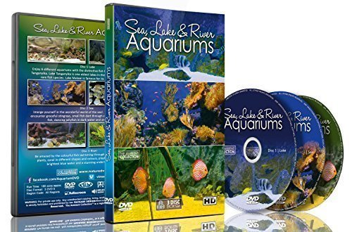Aquarium DVD - Sea, Lakes & River Aquariums - 18 Different Themed Aquarium -
