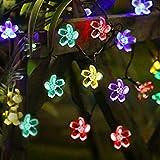 Luci Catena Luminosa, Decorazione decorativa Pomisty Fiore Multicolore Fiore, 6,8 metri impermeabile impermeabile, Decorazione natalizia, Giardino, Corte, Pario, Matrimonio, Party.