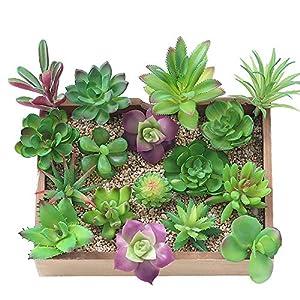 KUUQA 16 piezas de plantas artificiales carnosas mixtas, tallos de decoración sin maceta, plantas carnosas de imitación…