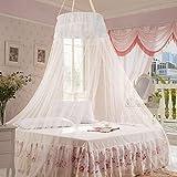 Moustiquaire Ciels de lit, Infreecs Grande moustiquaire insectes Protection Lit La Meilleure Moustiquaire Moustiquaire Protection anti-insectes (Blanc)