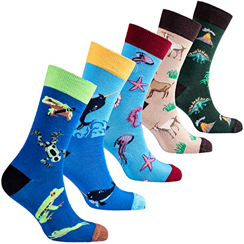 Socks n socks-Hombre 5 pares lujo Divertido algodón