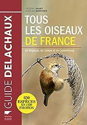 Tous les oiseaux de France, de Belgique, de Suisse et du Luxembourg