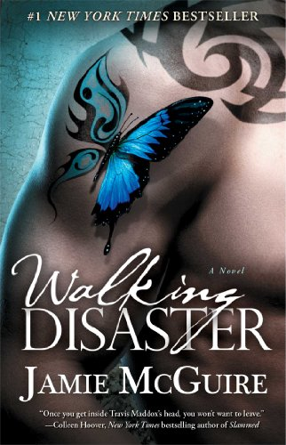 Novel (Beautiful Disaster Series) ()