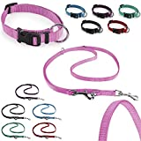 CarlCurt Classic-Line Hundehalsband & Hundeleine im Set, aus strapazierfähigem Nylon, XS 22-35cm & XS 1,90m, rosa