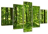Visario Leinwandbilder 6411 Bild auf Leinwand grüner Wald fertig gerahmt, 5-teilig, 100 cm