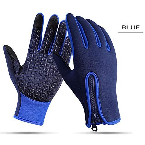 TZZ Männer und Frauen Winter Warm Touchscreen Texting Driving Motorrad Lederhandschuhe (Farbe : Blau)