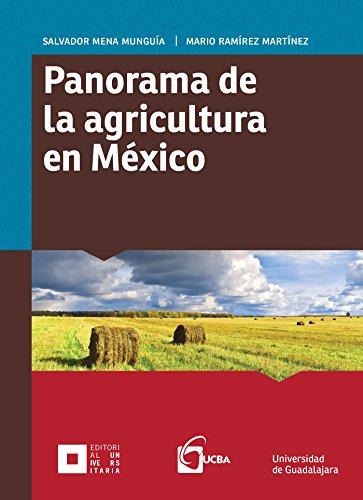 Panorama de  la agricultura  en México (Monografías de la Academia)