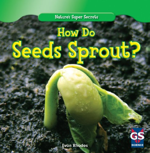 how-do-seeds-sprout