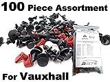 100 Stück Vauxhall / Opel Befestigung Clips Kit / Sortiment - Gemeinsame Opel Clips / Befestigungselemente