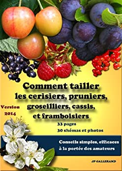 Comment tailler les cerisiers pruniers framboisiers groseilliers cassis ebook ang le - Comment tailler les framboisiers ...
