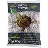 REPTILES PLANET Petit galets de rivière couleurs naturelles pour tortue aquatiques Turtle Stones 4,5 kg