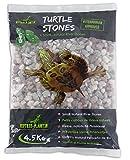 Rettili Planet Piccolo Ciottoli di Fiume Colori Naturali per Tartaruga Acquatici Turtle Stones 4,5kg