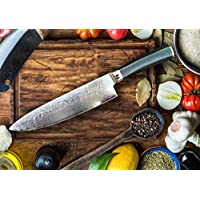 chef knife damascus steel and micarta handle