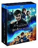 Harry Potter l'Intégrale des 8 Films + Les Animaux Fantastiques - Le monde des Sorciers de J.K. Rowling - Coffret Blu-Ray
