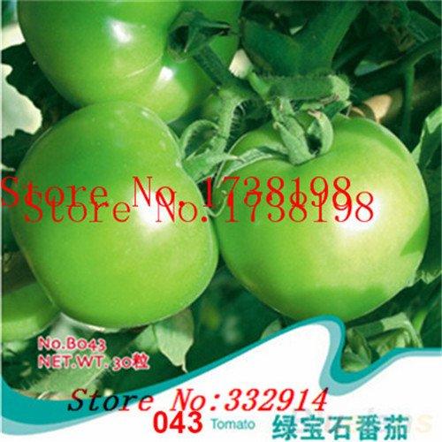 50pcs / lot Noir Violet long Aubergine Graines Semences Potagères SeedsAndPlants Gardn bricolage usine de légumes des plantes comestibles
