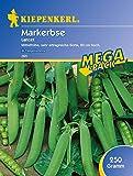 Erbsen - MarkErbsen - Lancet 250 g von Kiepenkerl