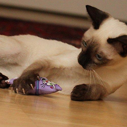 Lot de 3 coussin de jeu avec herbe a chat en 3 couleurs - Herbe a chat entretien ...