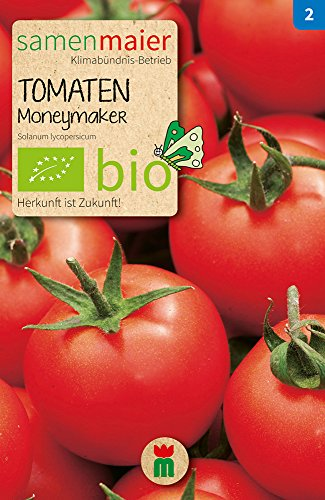 Samen Maier 775 Tomate Moneymaker (Bio-Tomatensamen)