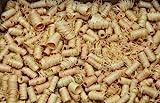 Ingbertson 12,5kg Skandi-Flash - natürliche Ofenanzünder aus Holzwolle in...