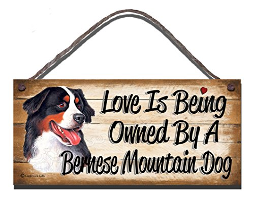"""Geburtstag Anlass Berner Sennenhund 'Holz-Wandschild, mit englischsprachiger Aufschrift""""Love is Being Owned By A Berner Sennenhund"""