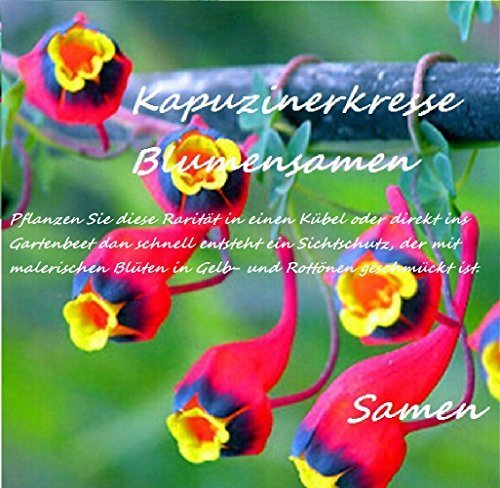 25x Kapuzinerkresse Samen Hingucker Kletterpflanze Pflanzensamen Pflanze Rarität Blumen Garten Saatgut Neuheit #96