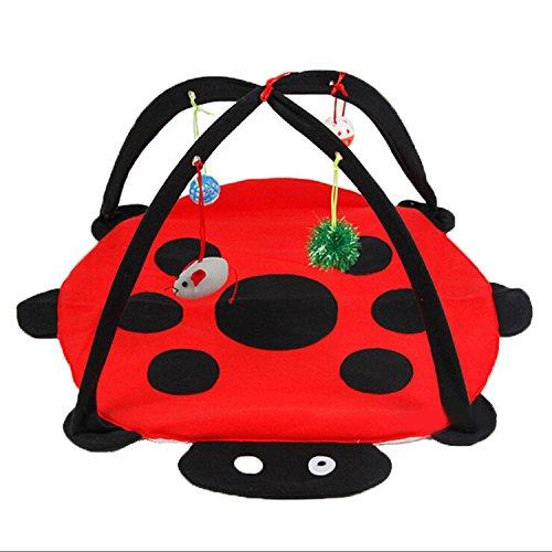 giocattolo-amaca-tenda-pieghevole-per-il-gatto-con-4-palle-beetle-forma
