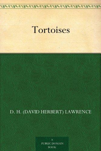 Tortoises book cover