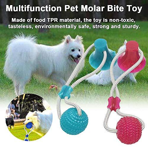 RecoverLOVE Toy Bite Pet Molar Mufti-Funzionale | Toy Dog Pet Rubber Ball con Ventosa | Pet Molar Chew Giocattolo per la Pulizia dei Denti