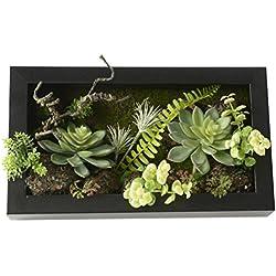 Vase artificiel en forme de cadre mural 3D - Balle, cactus, mousse sur pierre, feuilles vertes, fougères - Décoration de maison - 19,9 x 35cm
