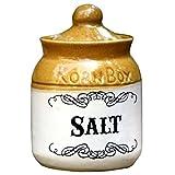 Eco Corner Salt Ceramic Jar