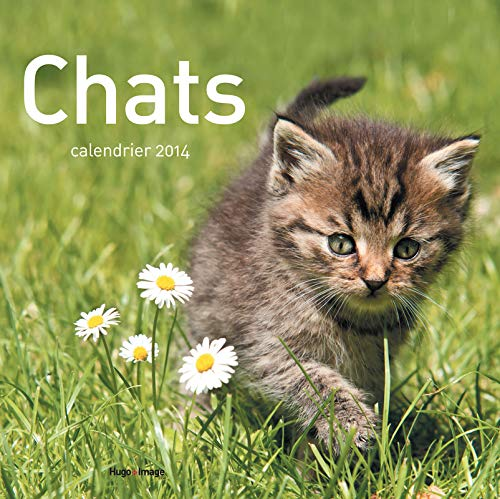 Calendrier mural Chats 2014