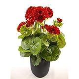 38cm artificial rojo Geranio en maceta gris (~ flores artificiales