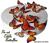 24 x Vorgeschnittene schöne orange Schmetterlinge essbares Reispapier/Oblatenpapier Kuchendekoration, Dekoration für Cupcake Kuchen Dessert, für Geburtstag Party Hochzeit Babyparty Halloween Ostern (M)