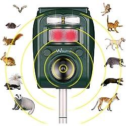 Répulsif Chat Ultrason Solaire Repulsif Chat Exterieur Sensibilité et Fréquence Réglable Ultrason Chat pour Repousser Animaux Nuisibles des écureuils, des taupes, des rats