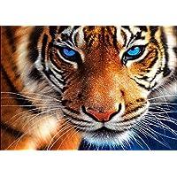 5D DIY Diamond Painting Tigers Full Drill Round Rhinestones Diamond Art Kits Animals for Adults and Kids(Canvas Size:15.7''×11.8'')