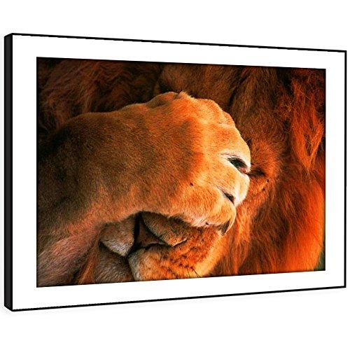 t Wall Art - (Brown Red Lion Gesicht Paw Afrika) Moderne Tier Wohnzimmer Schlafzimmer Stück Wohnkultur Leicht Hang Guide (72x51cm) (Lion Paw Prints)