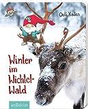 Winter im Wichtelwald