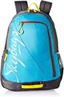 Skybags Blue Casual Backpack (BPGRO5ELBU)