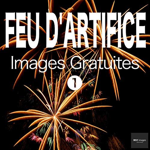 Couverture du livre FEU D'ARTIFICE Images Gratuites 1  BEIZ images - Photos Gratuites