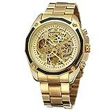 Dilwe Männliche Uhr, 4 Farben Moderne Hohle Entwurf automatische mechanische Anzeigen Armbanduhr mit justierbarem Edelstahl Uhrenband(Gold)