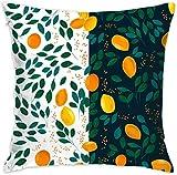Krooe Frutas de limón y Naranja con Hojas Verdes Fundas de cojín Funda de cojín Cuadrado para sofá Sillas de Oficina Decorativas Funda de Almohada Decorativa para el hogar 18x18