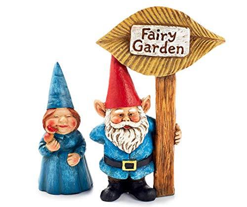 Big Lots!, Inc. Fairy Garden Gnome Couple