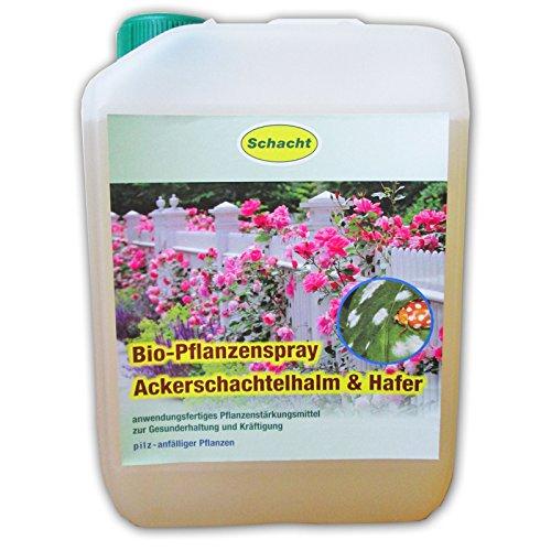 Schacht Anwendungsfertiges Pflanzenstärkungsmittel zur Gesunderhaltung von anfälligen Rosen