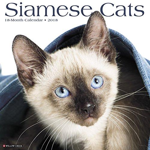 Siamese Cats 2018 Wall Calendar
